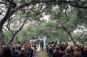 outdoor wedding ceremony at Hamilton 12